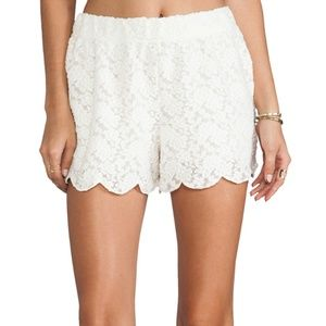 Lace Scallop Shorts!